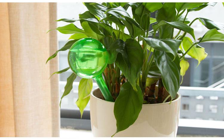 bew sserung f r pflanzen bew sserungssystem wasserspender. Black Bedroom Furniture Sets. Home Design Ideas